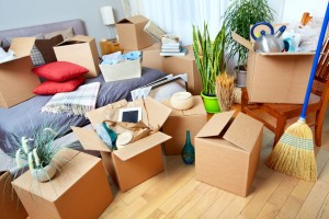 Megbízható költöztetők: A nyugodt költözés feltételei